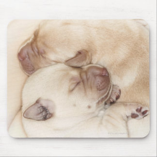Yellow Labrador Retriever puppies, 10 days old Mouse Mat