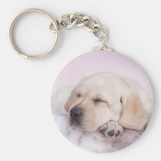 Yellow labrador retriever puppy basic round button key ring