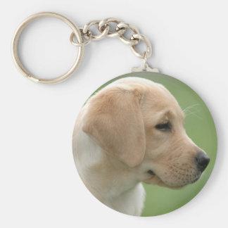 Yellow labrador retriever puppy basic round button key ring