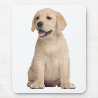 Yellow Labrador Retriever Puppy Dog Blue Mouse Pad