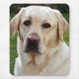 Yellow Labrador Retriever Puppy Dog Mouse Pad