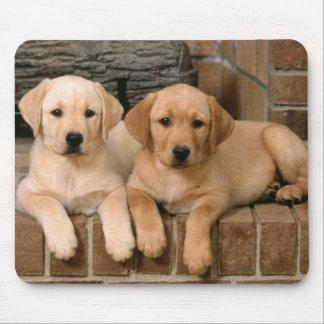 Yellow Labrador Retriever Puppy Dogs Mouse Mat
