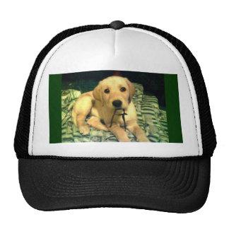 yellow labrador retriever puppy trucker hats