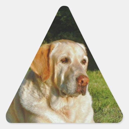 Yellow Labrador Retriever Triangle Stickers