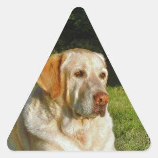 Yellow Labrador Retriever Triangle Sticker