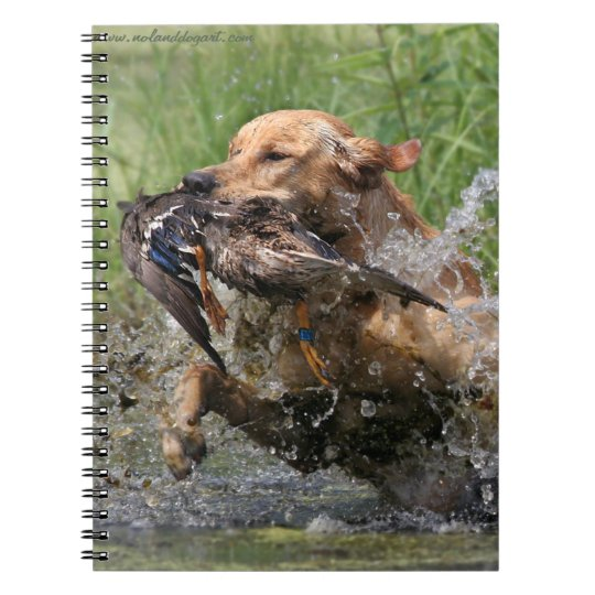 Yellow Labrador Retriever with duck Spiral Notebook