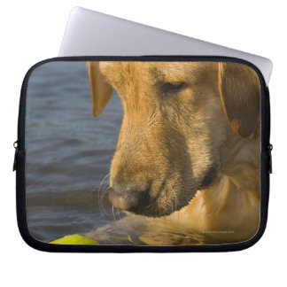 Yellow labrador with a tennis ball in the water laptop sleeve