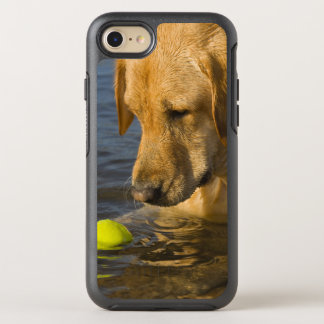 Yellow labrador with a tennis ball in the water OtterBox symmetry iPhone 7 case