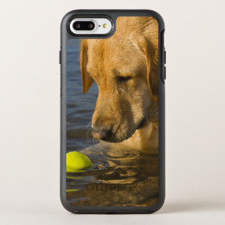 Yellow labrador with a tennis ball in the water OtterBox symmetry iPhone 7 plus case