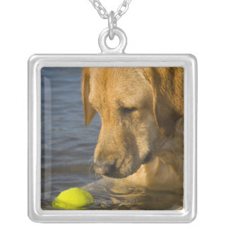 Yellow labrador with a tennis ball in the water silver plated necklace
