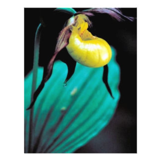 Yellow lady s slipper personalized flyer