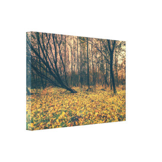 Yellow leaves in a forest in the fall canvas print
