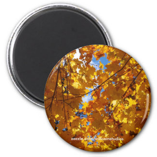 Yellow Leaves in Sunlight Magnet