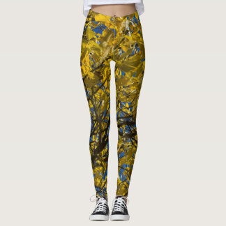 Yellow Leaves on Fall Tree v2 Leggings