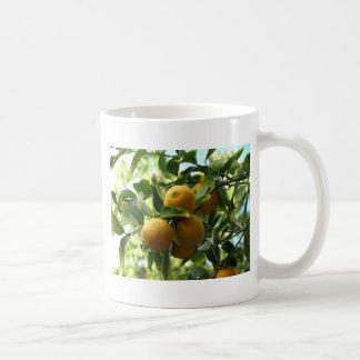 Yellow Lemons On The Tree Coffee Mugs
