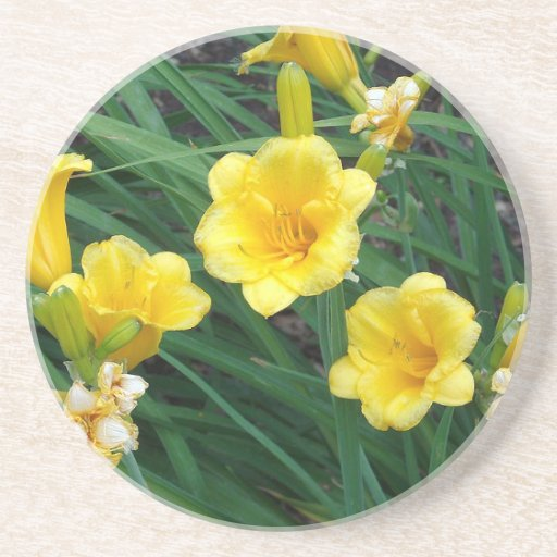 Yellow Lilies Drink Coaster