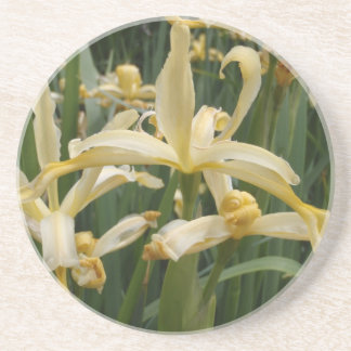 Yellow Lilies Coasters
