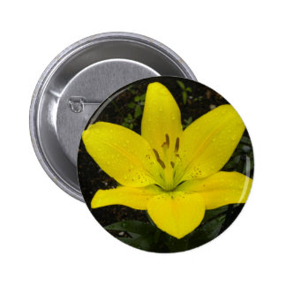 Yellow Lilly Perfection Button