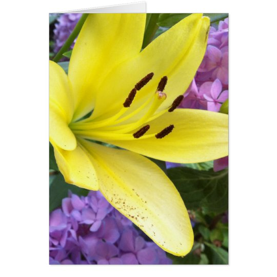 Yellow Lily and Lavender Hydrangea Greeting Card