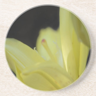 Yellow Lily Beverage Coasters