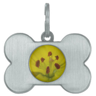 Yellow Lily Floral Pet Tag