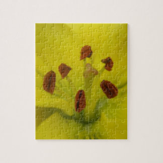 Yellow Lily Floral Puzzle