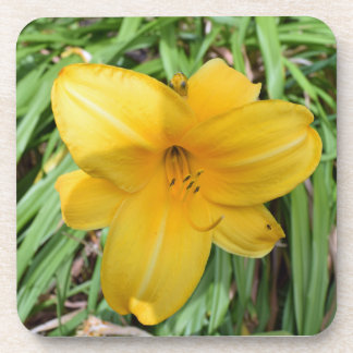 Yellow lily hard plastic coasters