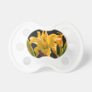 yellow lily in the garden pacifier
