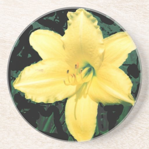 Yellow Lily Picture Coaster