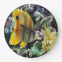 yellow longnose butterfly fish large clock