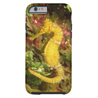 Yellow longsnout seahorse tough iPhone 6 case