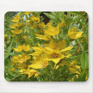 Yellow Loosestrife Mousemat