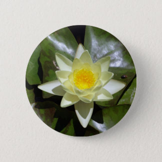 Yellow Lotus and lily pads 6 Cm Round Badge