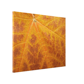 Yellow Maple Leaf Autumn Abstract Nature Canvas Print
