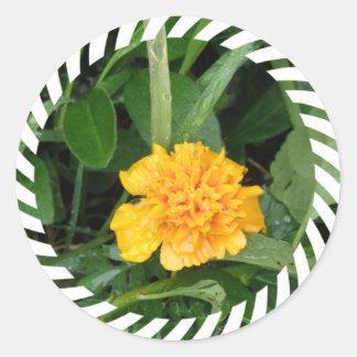 Yellow Marigold Sticker