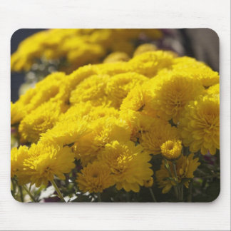 Yellow marigolds bask in sunlight mouse pad