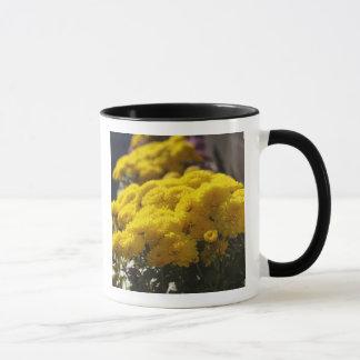 Yellow marigolds bask in sunlight mug