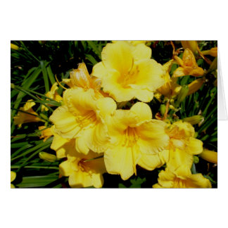 Yellow Mini Lilies Note Card