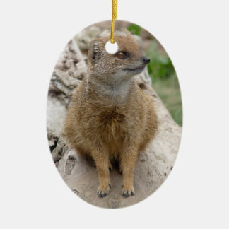 yellow mongoose christmas ornament