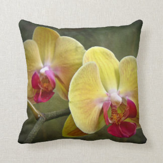 Yellow Moth Orchids - Phalaenopsis Cushion