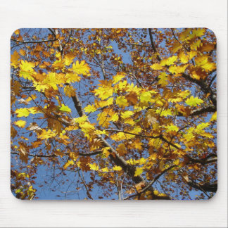 Yellow Mouse Mat