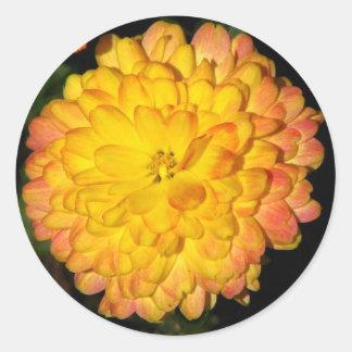Yellow Mum Stickers