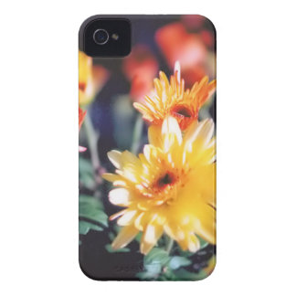 yellow mums iPhone 4 Case-Mate cases