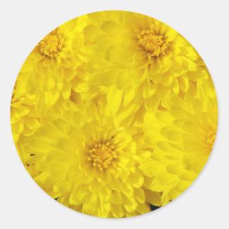 Yellow Mums Stickers