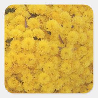"""Yellow Mums"" Sticker"