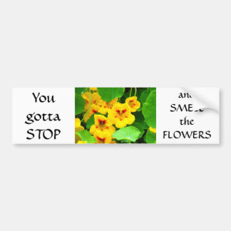 Yellow Nasturtiums Bumper Sticker