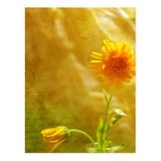 Yellow Note Postcard