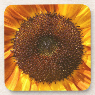Yellow, Orange, and Brown Sunflower Coasters