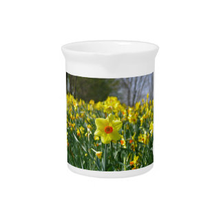 Yellow orange Daffodils 01.0.2 Drink Pitcher