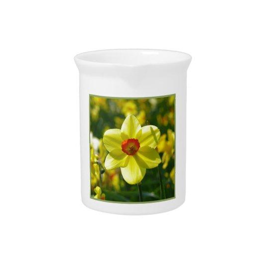 Yellow orange Daffodils 02.1g Beverage Pitchers